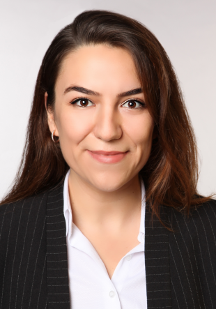 Emine Fulya Akbulut Irmak